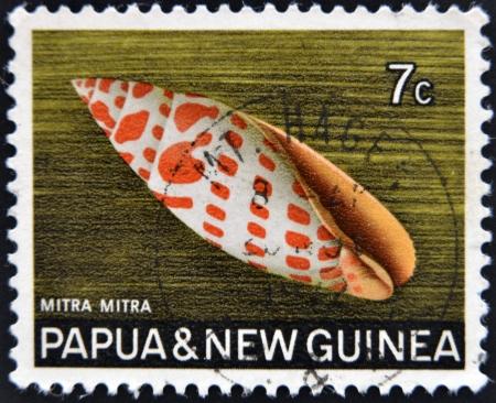 miter: PAPUA NEW GUINEA - CIRCA 1969:  A stamp printed in Papua New Guinea shows shell Mitra mitra (Episcopal miter), circa 1969  Editorial