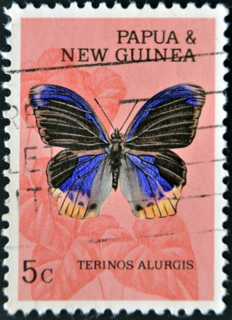 PAPUA NEW GUINEA - CIRCA 1995: A stamp printed in Papua New Guinea shows terinos alurgis, butterfly, circa 1995 Stock Photo - 14137071