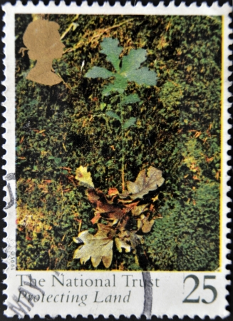 the national trust: UNITED KINGDOM - CIRCA 1995: A stamp printed in Great Britain shows The National Trust, protecting land, circa 1995