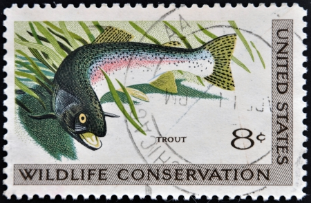 UNITED STATES OF AMERICA - CIRCA 1971  A stamp printed in USA dedicated to wildlife conservation, shows trout, circa 1971
