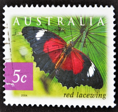 biblis: AUSTRALIA - CIRCA 2004: A stamp printed in Australia shows butterfly Red Lacewing, Cethosia biblis, circa 2004