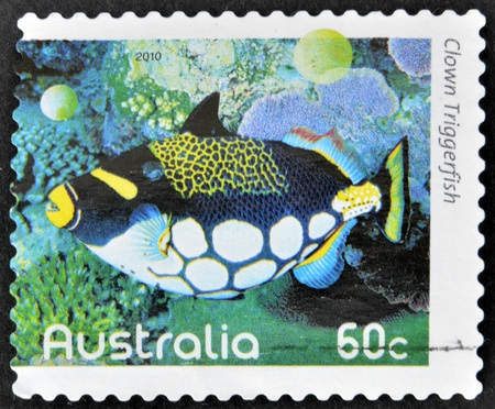 AUSTRALIA - CIRCA 2010: A stamp printed in Australia shows an image of clown triggerfish coral faith, inventive, circa 2010