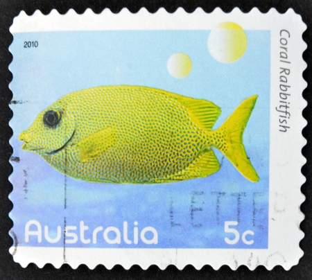 rabbitfish: AUSTRALIA - CIRCA 2010  A stamp printed in Australia shows an image of Coral rabbitfish coral faith, inventive, circa 2010