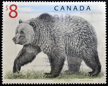 canada stamp: CANADA - CIRCA 1997: A stamp printed in Canada shows a Grizzly Bear, circa 1997