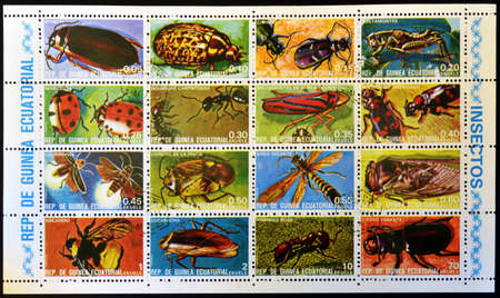 cicindela: EQUATORIAL GUINEA - CIRCA 1973: Collection stamps printed in Guinea shows insects, circa 1973