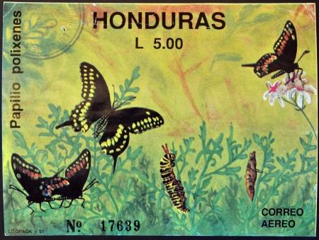 HONDURAS - CIRCA 1992: A stamp printed in Honduras shows butterfly, Papilio polixenes, circa 1992