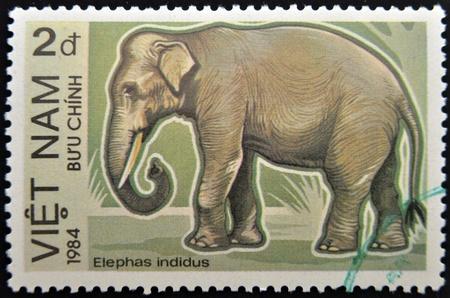 VIETNAM - 1984: A stamp printed in  Vietnam displaying an elephant, Circa 1984