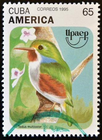 CUBA - CIRCA 1995  A stamp printed in Cuba shows a bird, todus multicolor, circa 1975 Stock Photo - 14678045