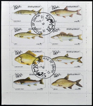 OMAN - CIRCA 1973: A collection stamps printed in Oman showing eight kinds of fish, circa 1973 photo