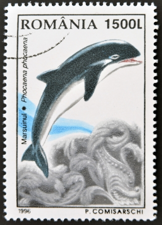 ROMANIA - CIRCA 1996: A stamp printed in Romania shows dolphin, circa 1996.  Stock Photo - 14678019