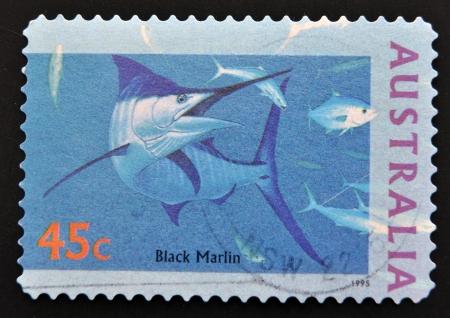 AUSTRALIA - CIRCA 1995: stamp printed in Australia shows Black Marlin, circa 1995  photo