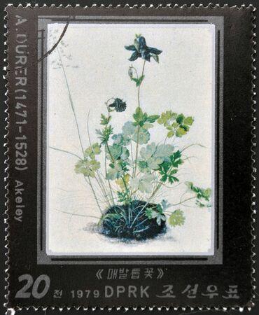 durer: Corea del Nord - CIRCA 1979: Un timbro stampato in Corea del Nord mostra Akeley di Albrecht Durer, circa 1979