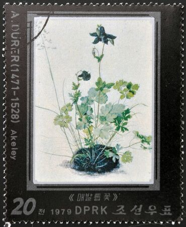 durer: NORTH KOREA - CIRCA 1979: A stamp printed in North Korea shows Akeley by Albrecht Durer, circa 1979