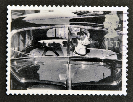 UNITED KINGDOM - CIRCA 2001  A stamp printed in Great Britain shows Dog in car, circa 2001 photo