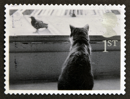 UNITED KINGDOM - CIRCA 2001  A stamp printed in Great Britain shows Cat watching Bird, circa 2001 Stock Photo - 14933849