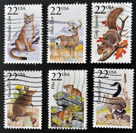 UNITED STATES OF AMERICA - CIRCA 1987: Collection stamps printed in USA dedicated to North American wildlife, circa 1987 photo