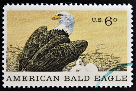UNITED STATES OF AMERICA - CIRCA 1969: A Stamp printed in USA shows american blad eagle, circa 1969  photo