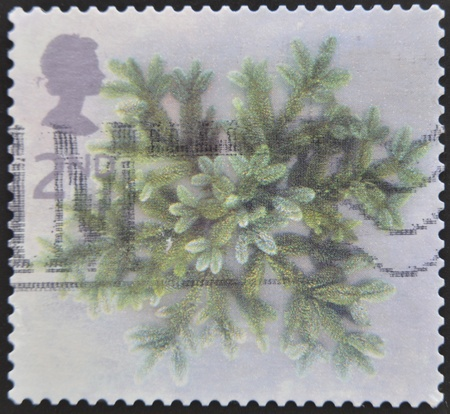 mailmen: UNITED KINGDOM - CIRCA 2002: A stamp printed in Great Britain dedicated to Christmas, shows Spruce branches, circa 2002