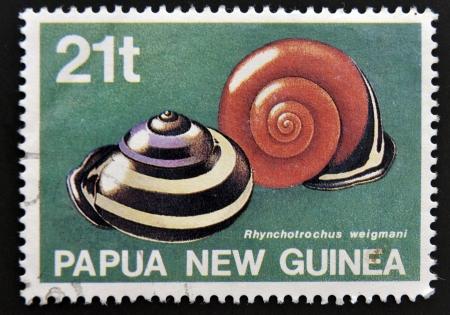 autochthonous: PAPUA NEW GUINEA - CIRCA 1991: A stamp printed in Papua New Guinea shows Snails autochthonous ( rhynchotrochus weigmani), circa 1991