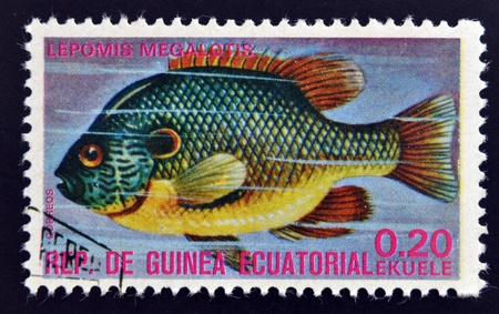 subsea: EQUATORIAL GUINEA - CIRCA 1974  A stamp printed in Guinea Ecuatorial dedicated to exotic fish shows lepomis megalotis, circa 1974   Editorial