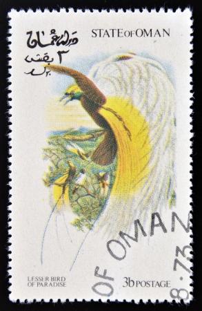 OMAN - CIRCA 1973: A stamp printed in Oman dedicated to\ exotic birds shows lesser bird of paradise, circa 1973\