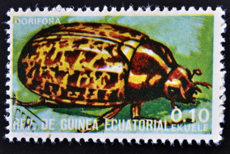 EQUATORIAL GUINEA - CIRCA 1973:  stamp printed in Guinea dedicated to insects shows Colorado beetle, circa 1973