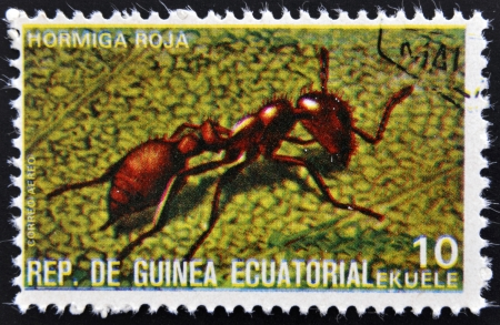 EQUATORIAL GUINEA - CIRCA 1973:  stamp printed in Guinea dedicated to insects shows red ant, circa 1973