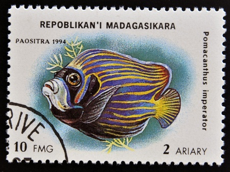 pomacanthus imperator: MADAGASCAR - CIRCA 1994: stamp printed in Madagascar dedicated to fish shows pomacanthus imperator, circa 1994