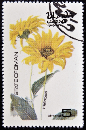 OMAN - CIRCA 1977: stamp printed in Oman dedicated to flowers shows Heliopsis, circa 1977