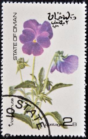 OMAN - CIRCA 1977  stamp printed in Oman dedicated to flowers shows viola cornuta, circa 1977