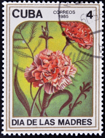 CUBA - CIRCA 1985: A stamp printed in Cuba dedicated to mother´s day shows image of two carnations, circa 1985  photo