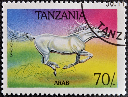 TANZANIA - CIRCA 1993  A stamp printed in Tanzania shows Arab horse, circa 1993 Stock Photo - 16030290