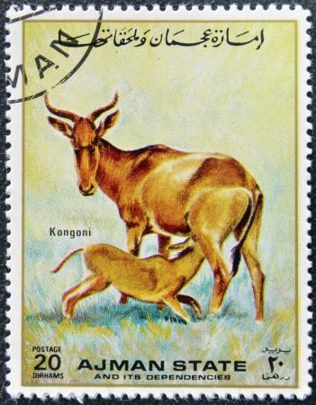 MANAMA AJMAN - CIRCA 1967: a stamp printed in Ajman shows Kongoni, circa 1967 Stock Photo - 16136929