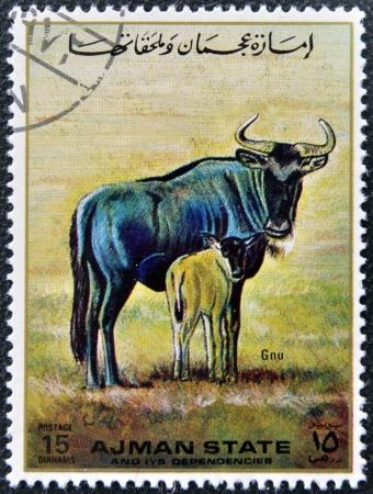 MANAMA AJMAN - CIRCA 1967: a stamp printed in Ajman shows Gnu, circa 1967 Stock Photo - 16136944