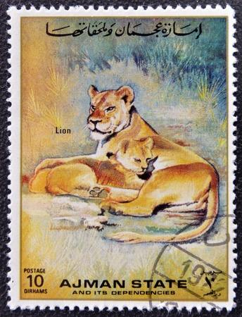 MANAMA AJMAN - CIRCA 1967: a stamp printed in Ajman shows Lion, circa 1967 Stock Photo - 16136959