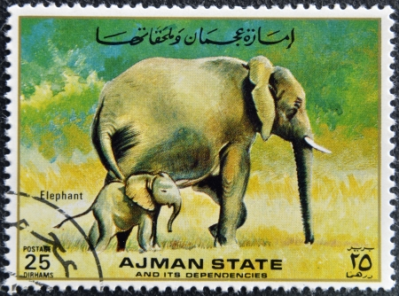 MANAMA AJMAN - CIRCA 1967: a stamp printed in Ajman shows Elaphant, circa 1967  Stock Photo - 16136937