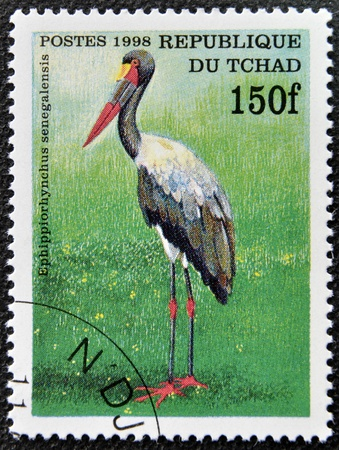 CHAD - CIRCA 1998: A stamp printed in Chad shows ephippiorhynchus senegalensis, circa 1998 Stock Photo