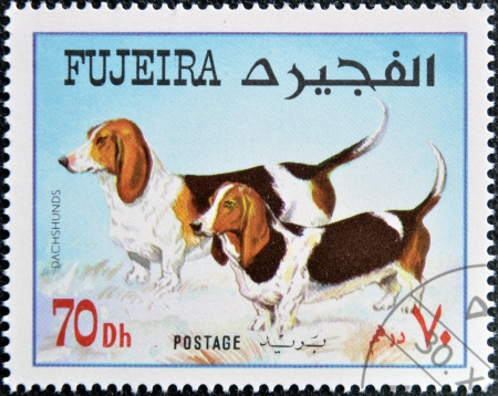 fujeira: FUJEIRA - CIRCA 1980: A stamp printed in Fujeira dedicated to dogs, shows dachshunds, circa 1980