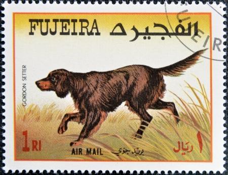 fujeira: FUJEIRA - CIRCA 1980: A stamp printed in Fujeira dedicated to dogs, shows gordon setter, circa 1980 Stock Photo