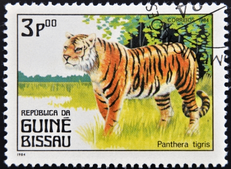 panthera tigris: GUINEA BISSAU - CIRCA 1984: Un sello impreso en Guinea muestra panthera tigris, circa 1984 Foto de archivo