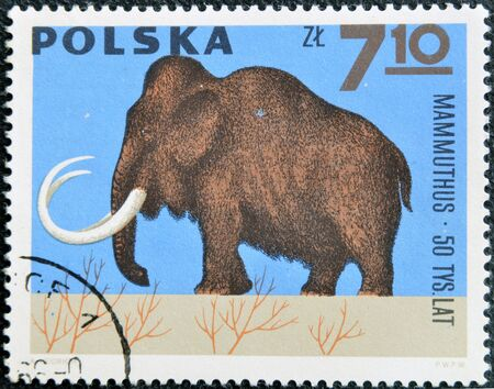 vertebrates: POLAND - CIRCA 1966  A stamp printed in Poland shows Mammoth from the series  Dinosaurs, Prehistoric Vertebrates, circa 1966