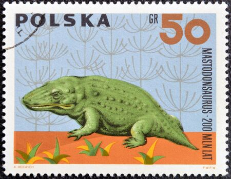 POLAND - CIRCA 1966: A stamp printed in Poland shows Mastodonsaurus from the series  Dinosaurs, Prehistoric Vertebrates, circa 1966  photo