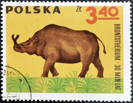 vertebrates: POLAND - CIRCA 1966: A stamp printed in Poland shows Archaeopteryx  from the series  Dinosaurs, Prehistoric Vertebrates, circa 1966