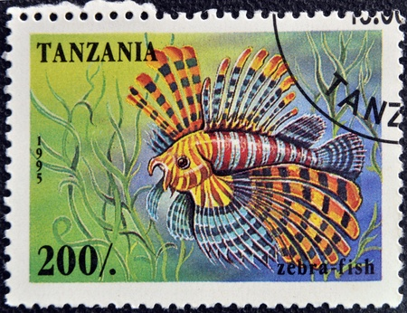 zebrafish: TANZANIA - CIRCA 1995: A stamp printed in Tanzania showing Zebrafish, circa 1995  Stock Photo