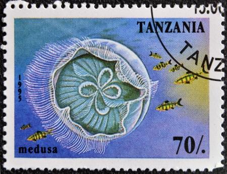 TANZANIA - CIRCA 1995: A stamp printed in Tanzania showing Jellyfish, circa 1995  photo