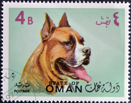 OMAN - CIRCA 1971: stamp printed in Oman, shows a Dog breed American Staffordshire, circa 1971 photo