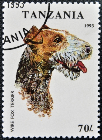 TANZANIA - CIRCA 1993: A stamp printed in Tanzania shows Wire Fox Terrier, circa 1993  photo
