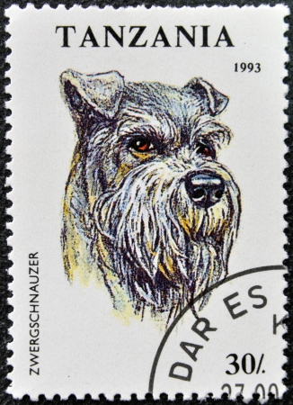 TANZANIA - CIRCA 1993: A stamp printed in Tanzania shows Zwergschnauzer, circa 1993  photo