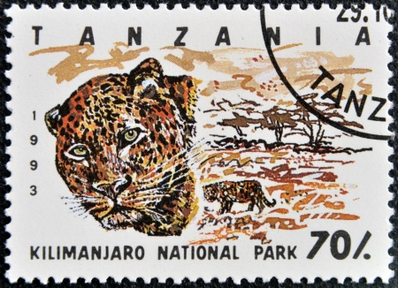 TANZANIA - CIRCA 1993: Stamp printed in Tanzania dedicated to Kilimanjaro national park, shows leopard, circa 1993 photo
