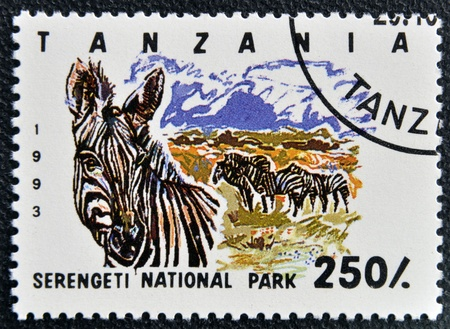 TANZANIA - CIRCA 1993: Stamp printed in Tanzania dedicated to Serengeti national park, shows zebra, circa 1993 photo
